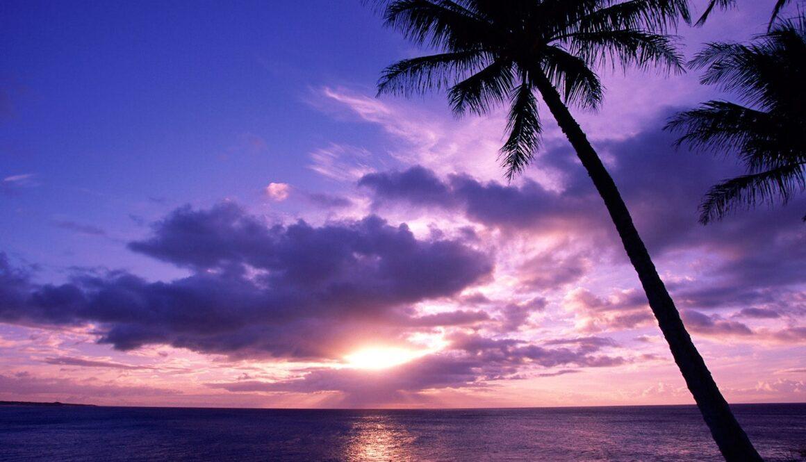 Paradise-Awaits-Part-2-of-3.jpg
