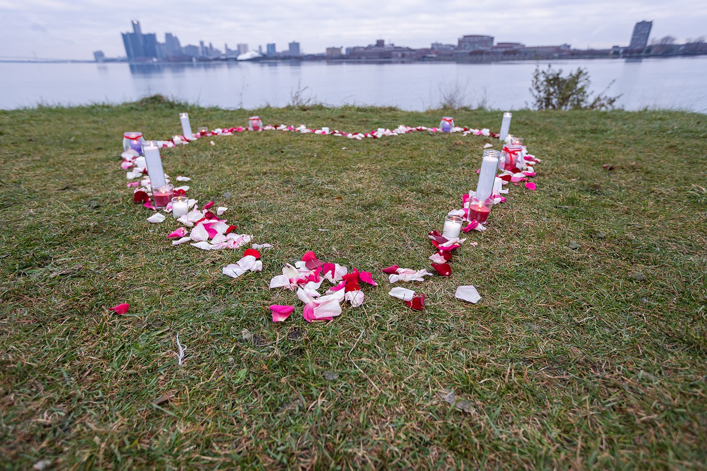 engagement heart decoration detroit engagement proposal planner